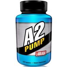 a2pump