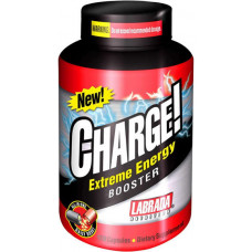 charge_thermo