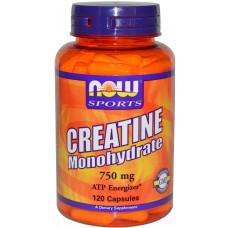 creatine_mono_120caps_now