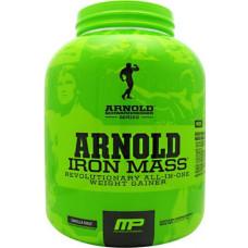 iron_mass