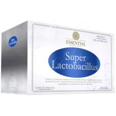 super_lactobacilus